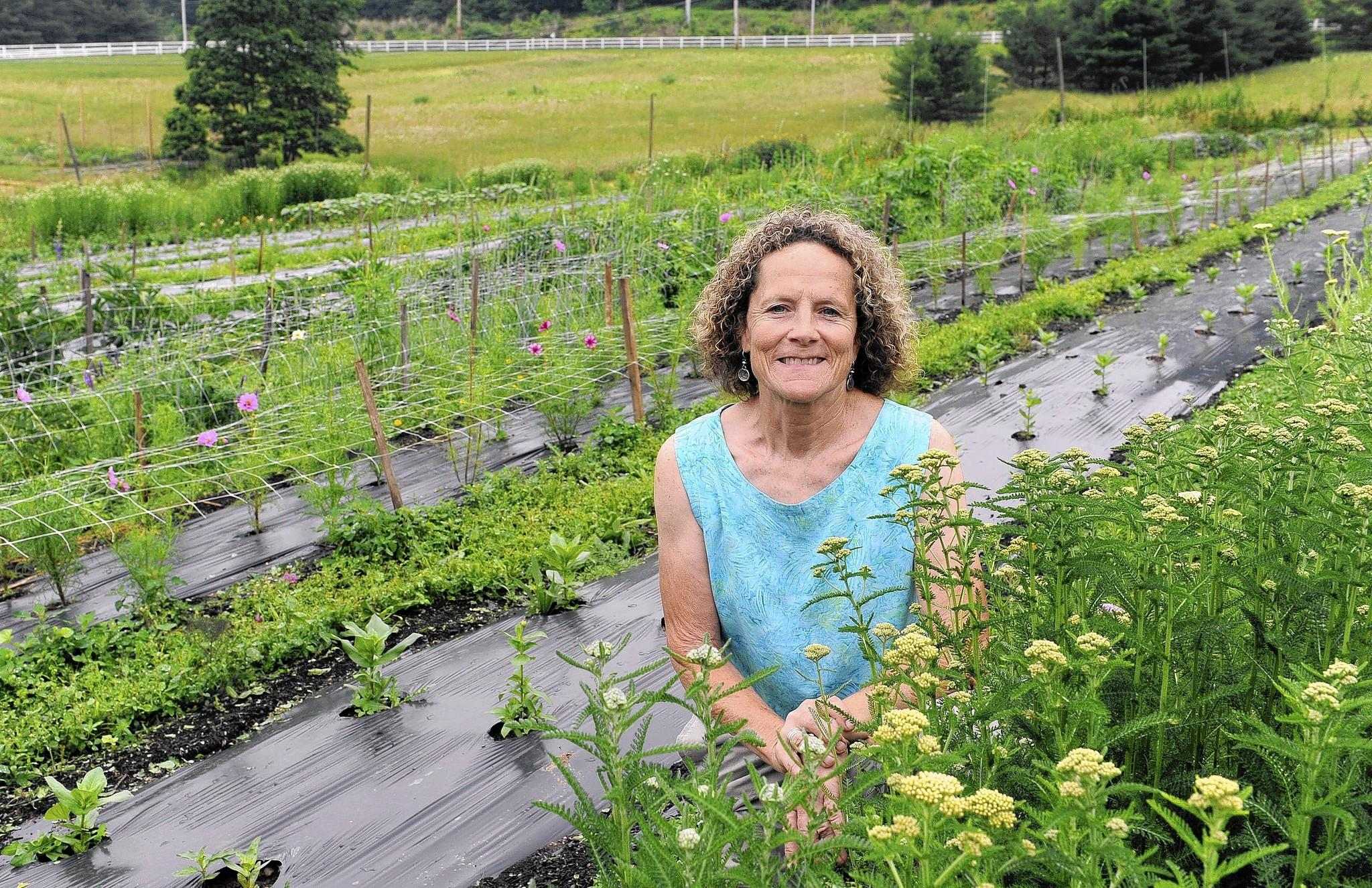 Cate Murphy is founder and executive director of Talmar, a garden and horticultural therapy program located in Cromwell Valley Park.
