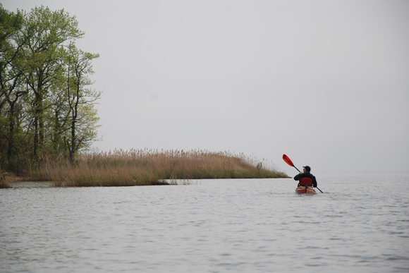 A kayaker at the mouth of Shallow Creek