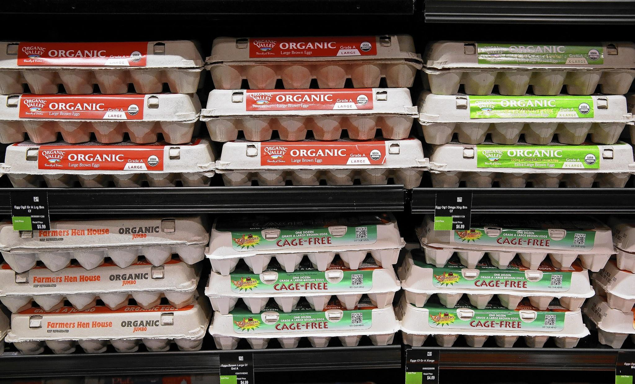 Organic and cage-free eggs are on display shelves.
