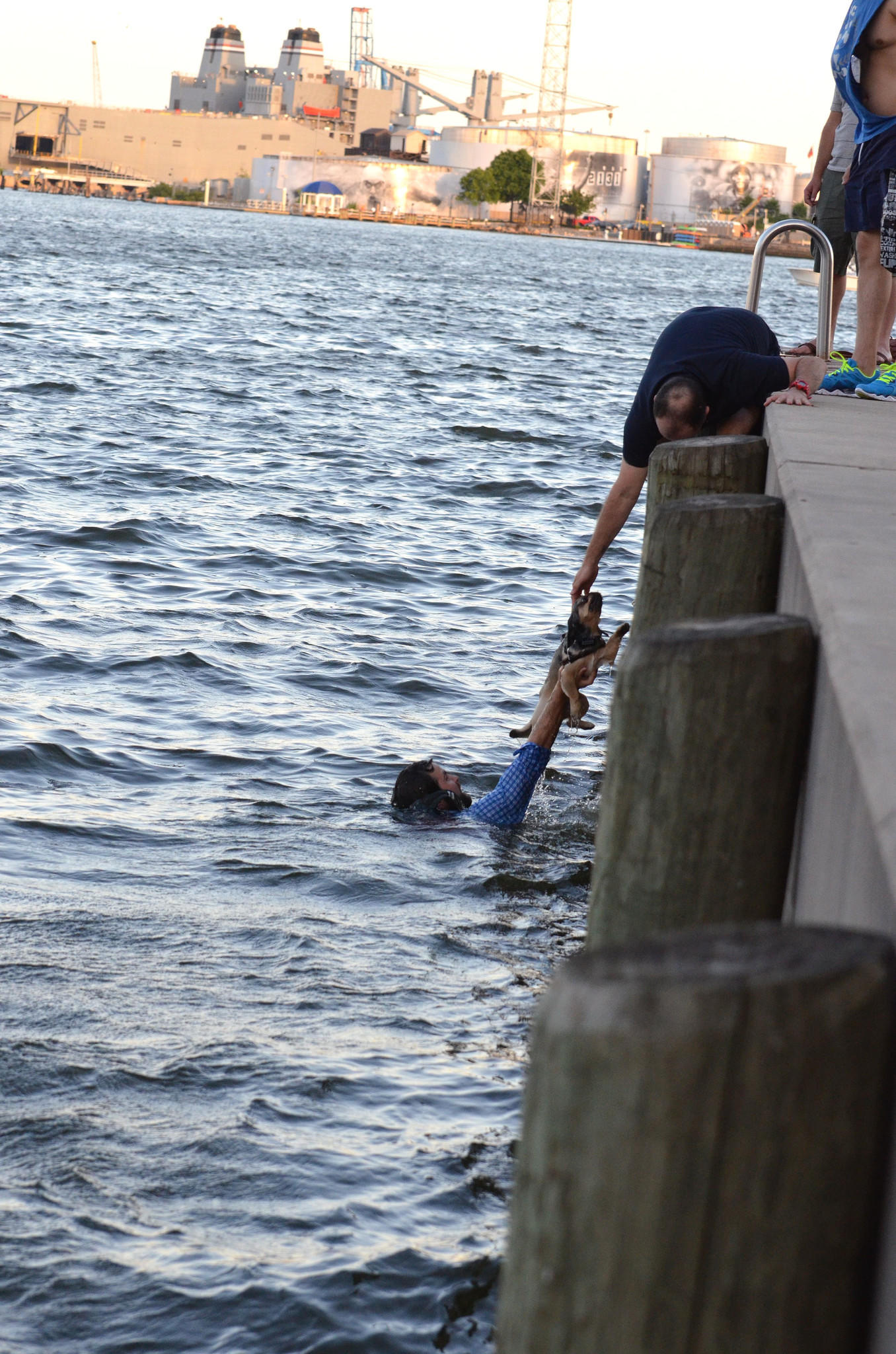 Matt Corasanti lifts a puppy to its owners after he exited his kayak to help rescue the dog from the water along Canton.