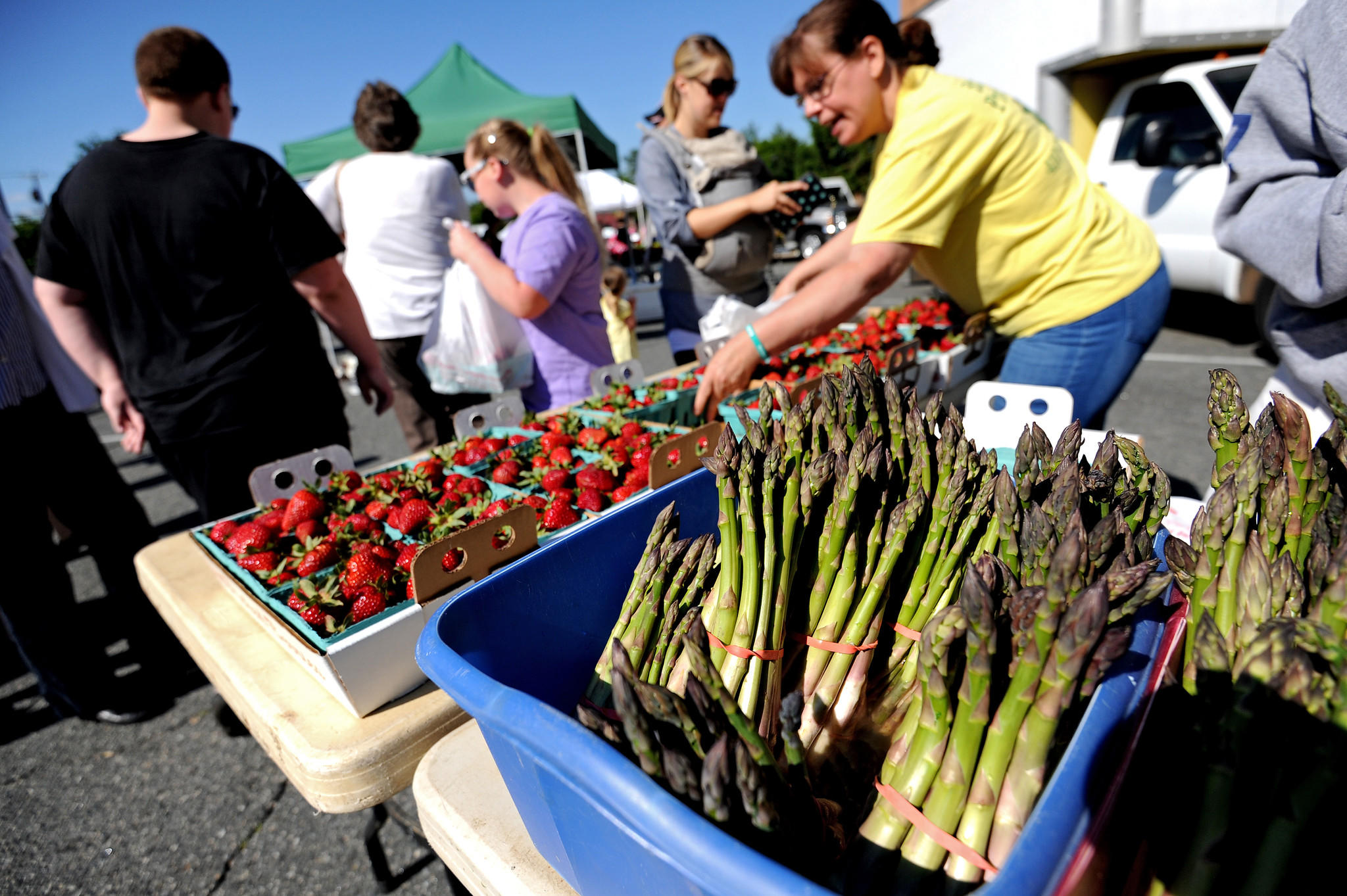 Customers of Brad's Produce of Churchville, Md., purchase asparagus and strawberries during the Bel Air Farmer's Market. Brad's Produce is one of several Harford County farms practicing sustainable agriculture.