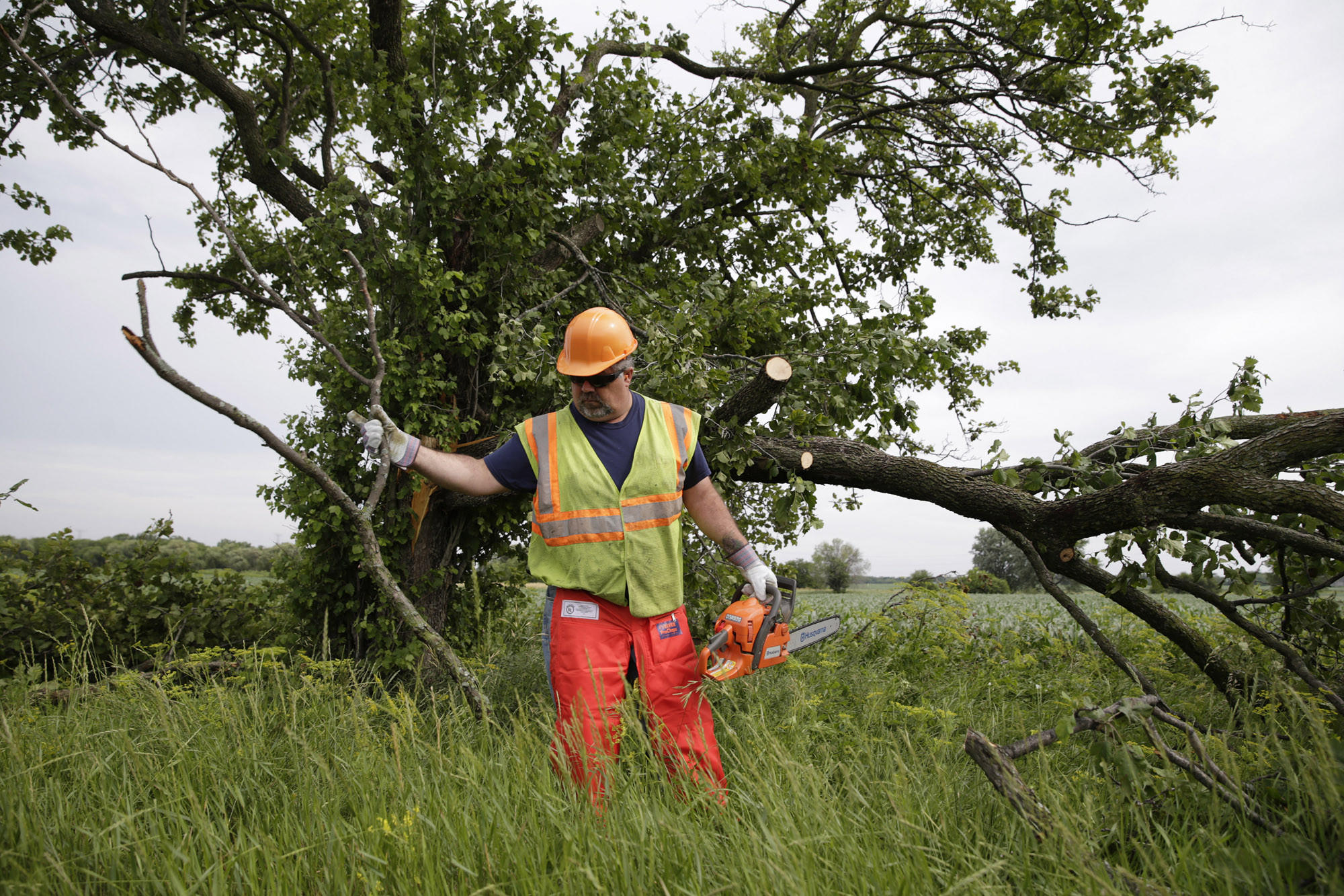 IDOT workers clear tree branches from the shoulder of Route 176 in Crystal Lake following an early morning storm.