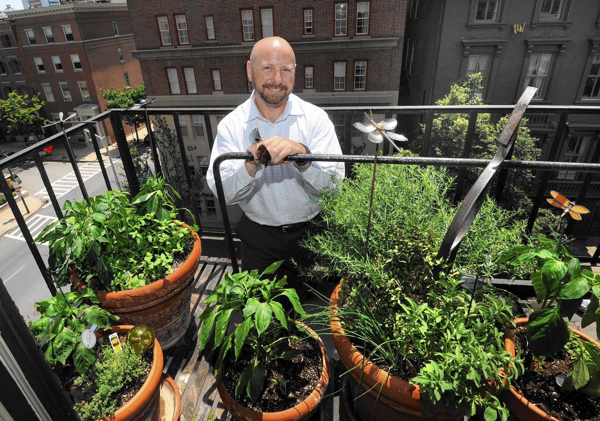 Baltimore Urban Gardening Safety Tips Tribunedigital