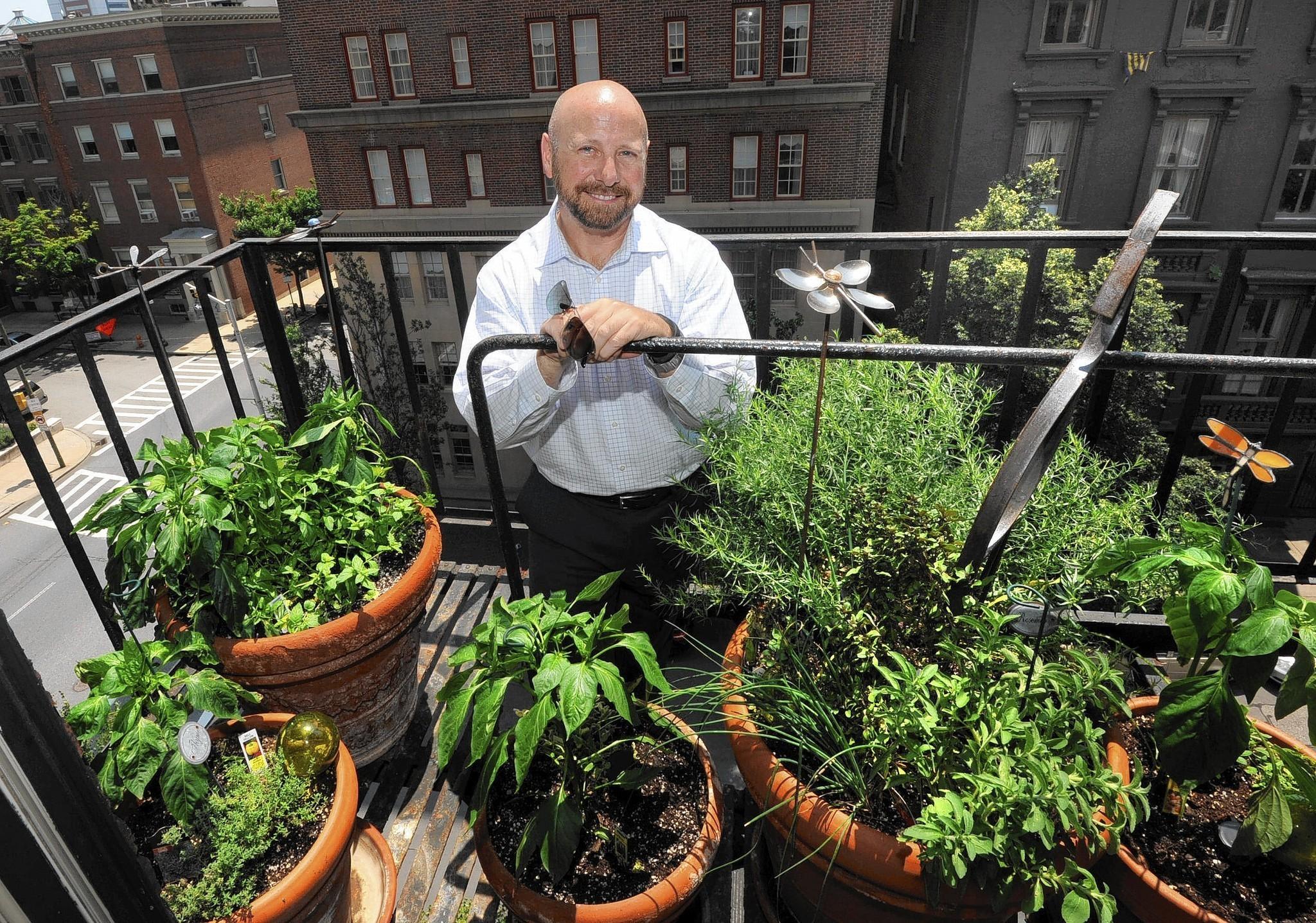 Baltimore Urban Gardening Safety Tips Baltimore Sun