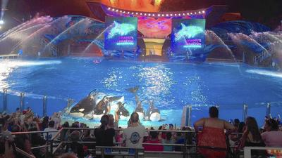 Groupon deal gets you SeaWorld or Busch Gardens Fun Card for $75