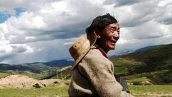 Gene in Tibetans
