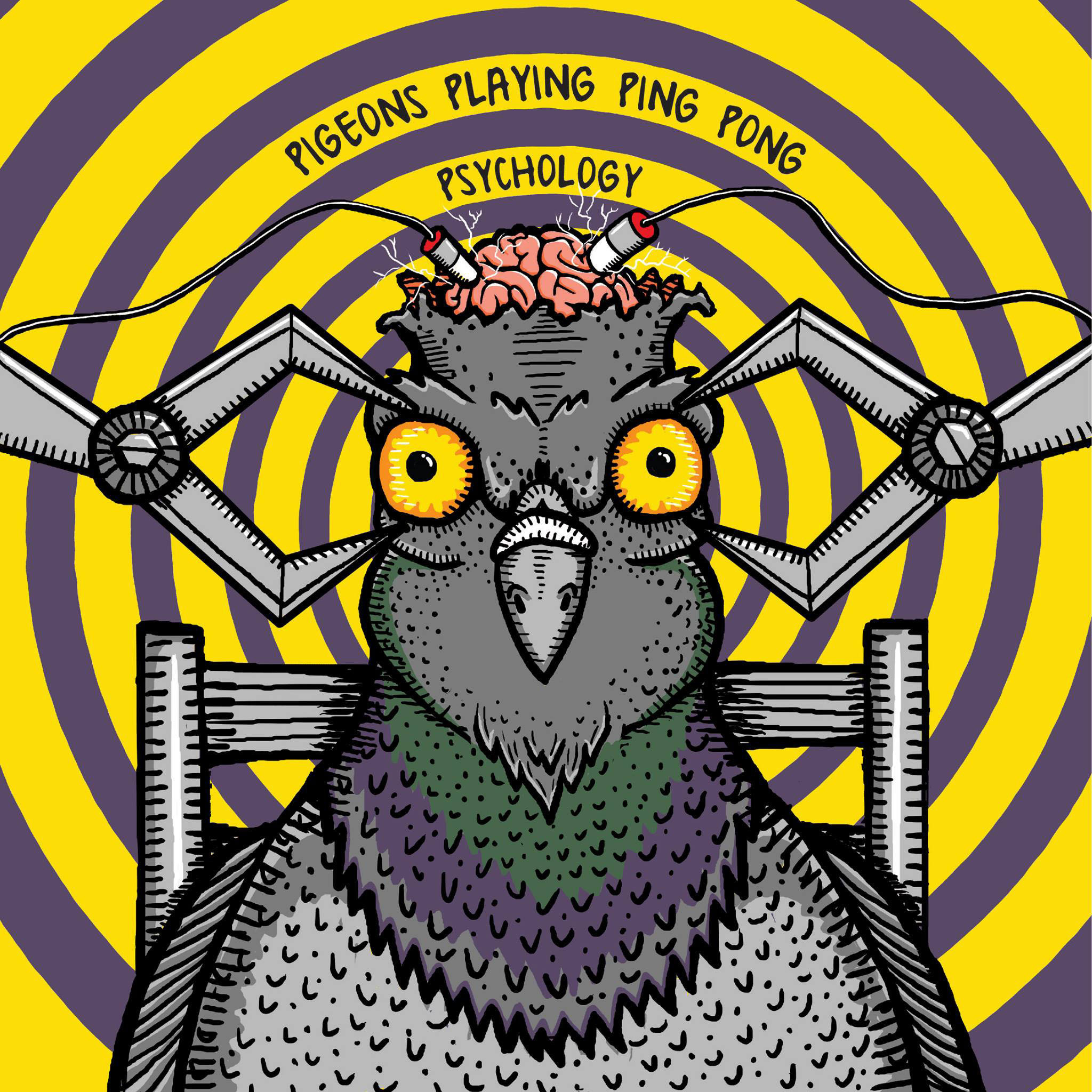 Baltimore album reviews [Pictures] - Pigeons Playing Ping Pong,