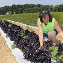The veteran: Joan Normam, One Straw Farm