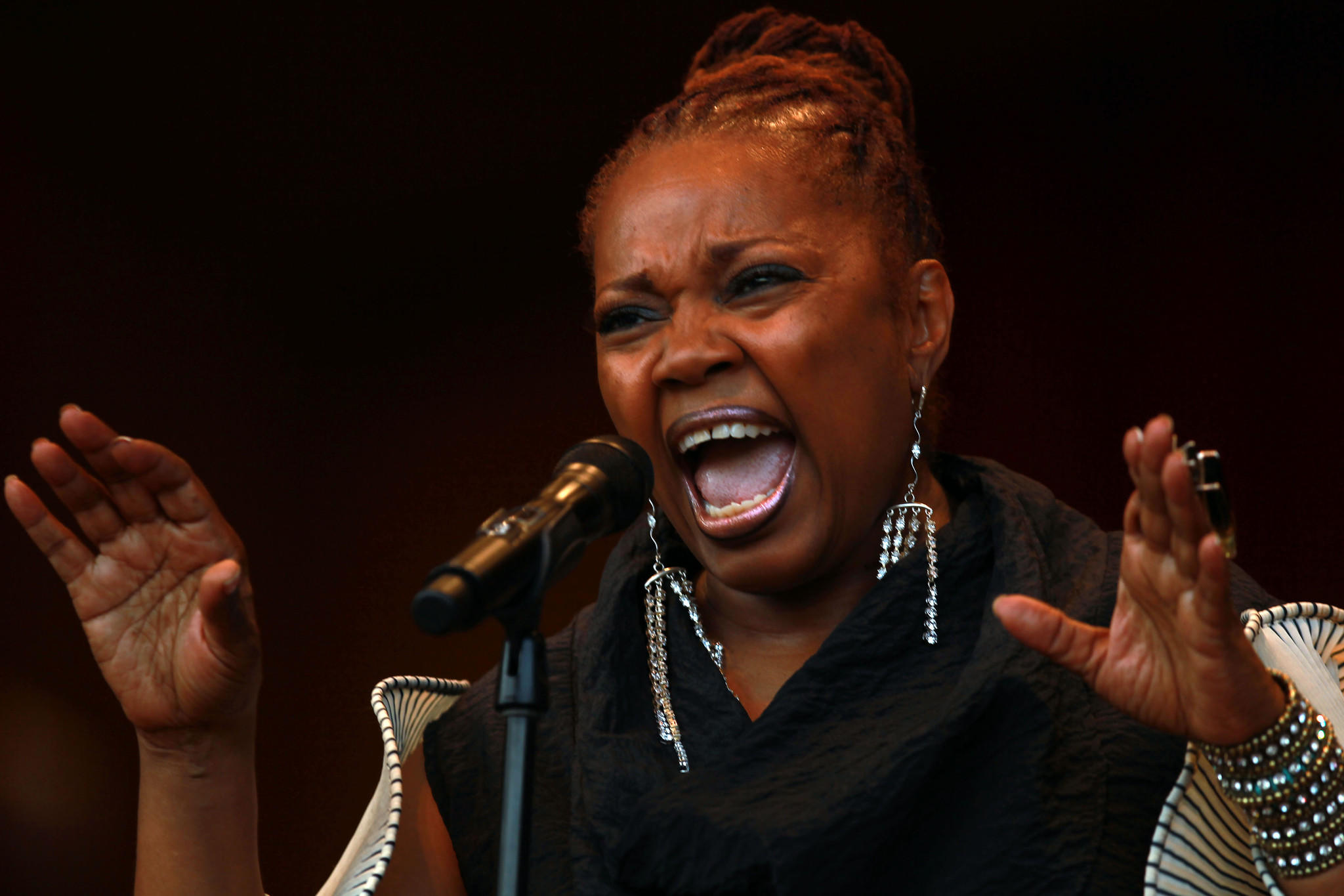 Dee Alexander will be among the headliners at the eighth annual Hyde Park Jazz Festival.