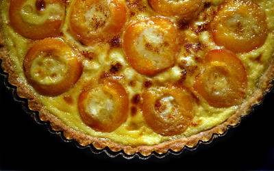 Apricot tart brulee