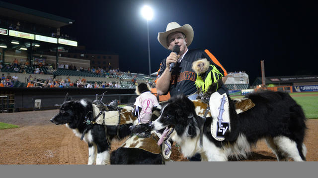 Cowboy Monkey Rodeo visits Aberdeen IronBirds