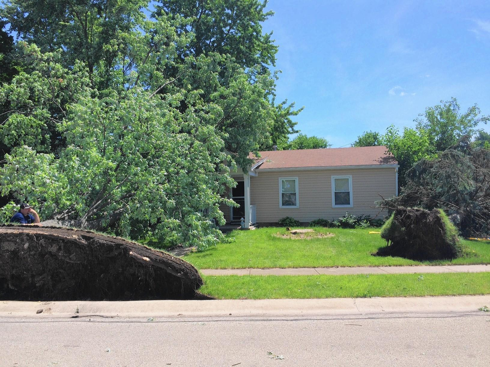 Roughly 40 percent of Romeoville's ComEd customers lost power after the June 30 storm that produced a tornadoes and uprooted trees.