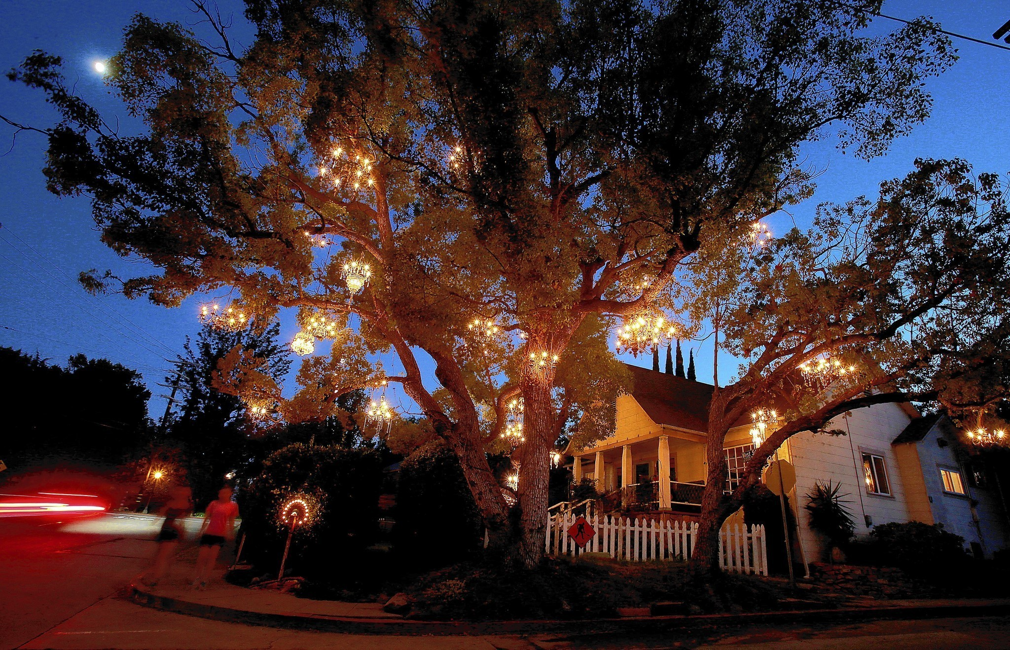 Chandelier Tree is a twinkling star in Silver Lake - LA Times