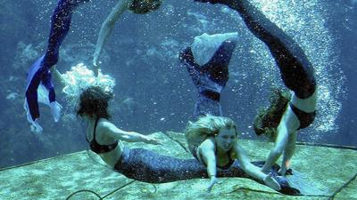 A Weeki Wachee mermaid tale