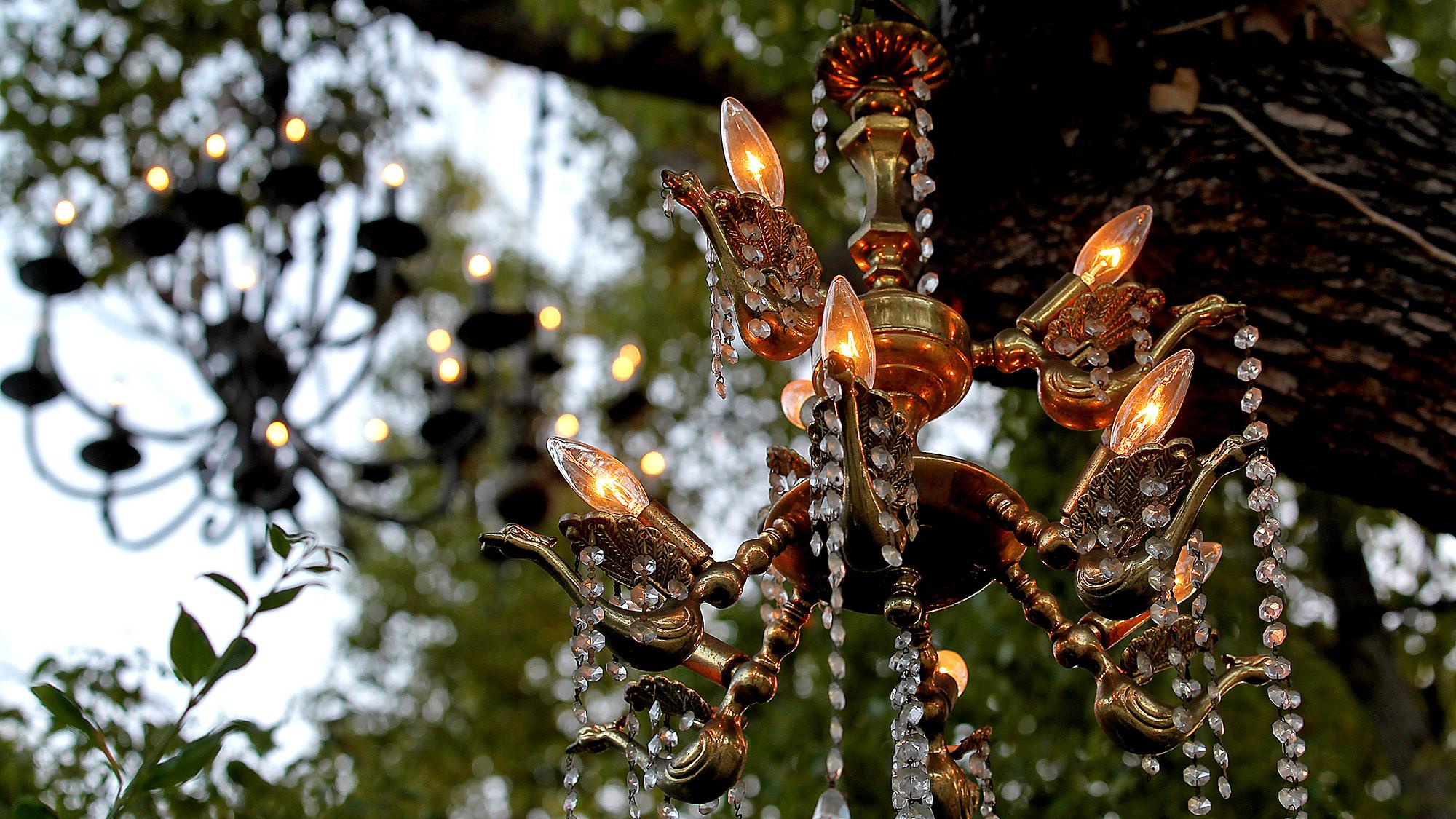 Chandelier Tree sparkles in Silver Lake - LA Times