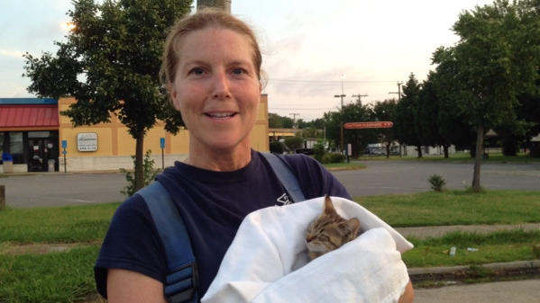 Video: Firefighters find kitten after house fire