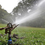 California approves big fines for wasting water during drought