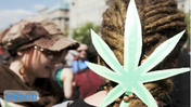 Local DC paper offers to pay marijuana fines [Video]