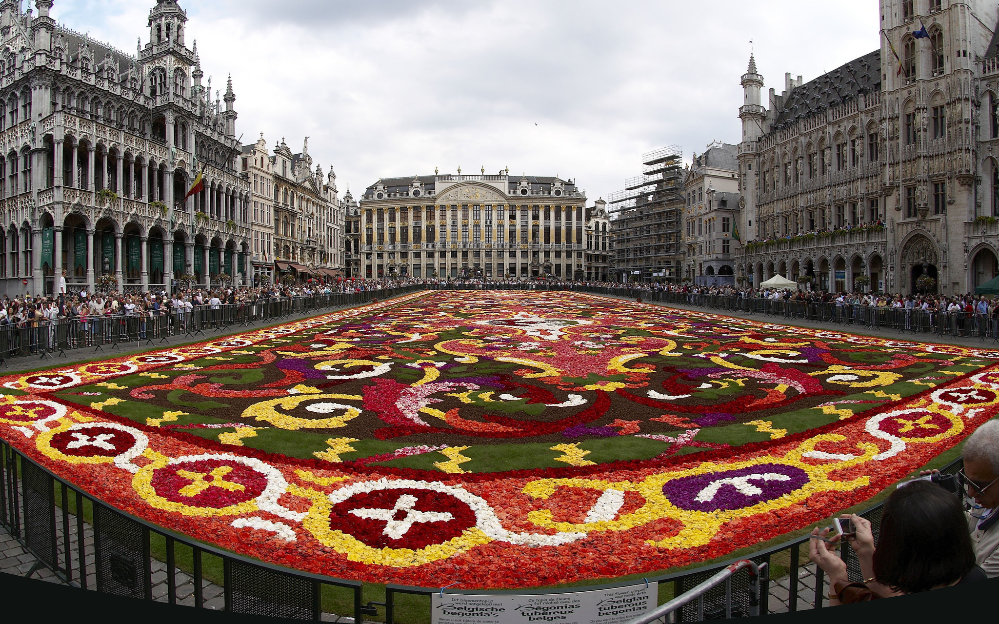 Belgium When 750000 Begonia Flowers Come To Brussels
