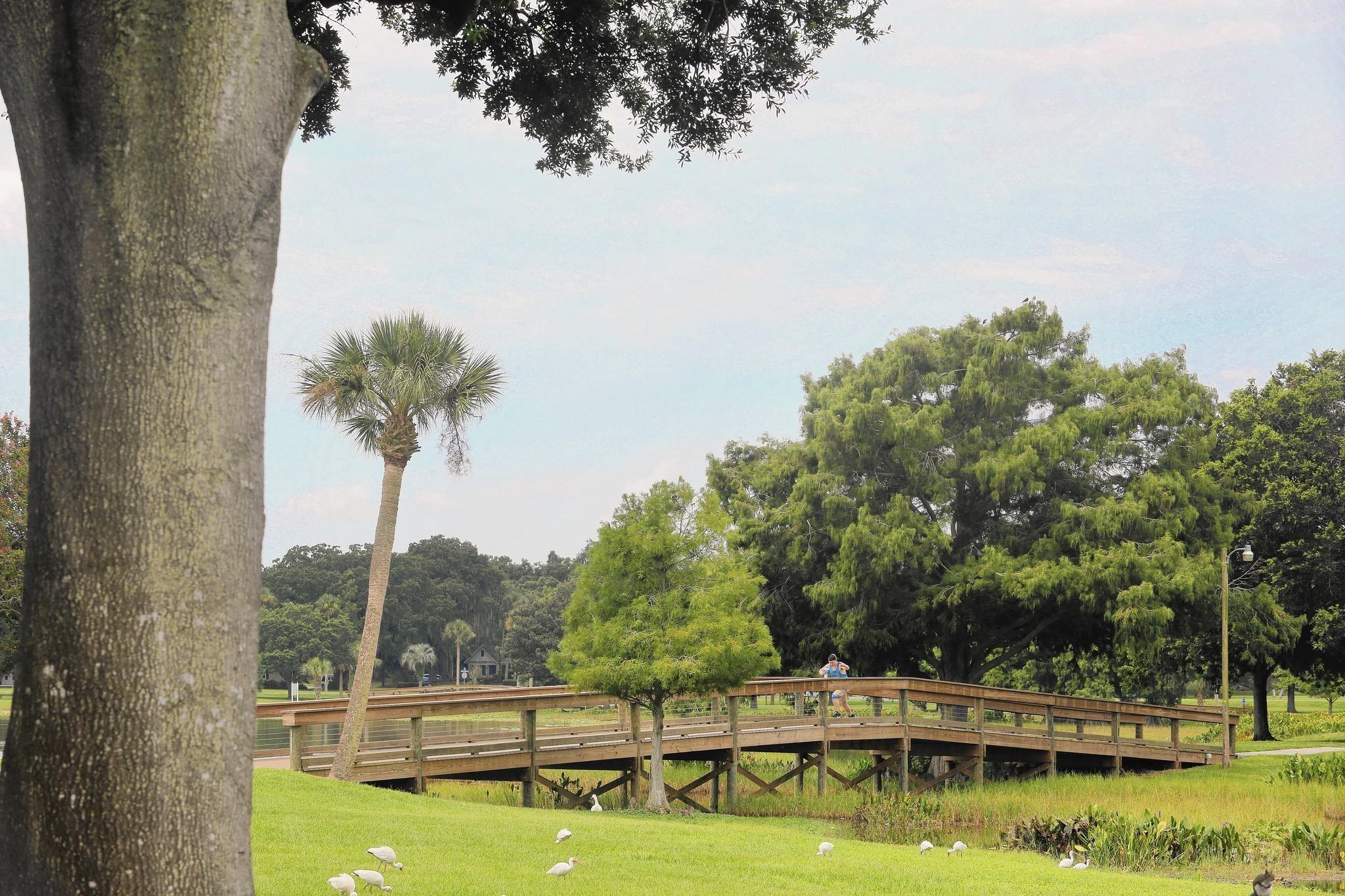 Leesburg Looks To Restore Luster To Aging Venetian Gardens   Orlando  Sentinel