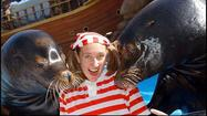 SeaWorld closing 'Clyde and Seamore Take Pirate Island'