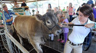 Harford Farm Fair means there's plenty to do [Editorial]