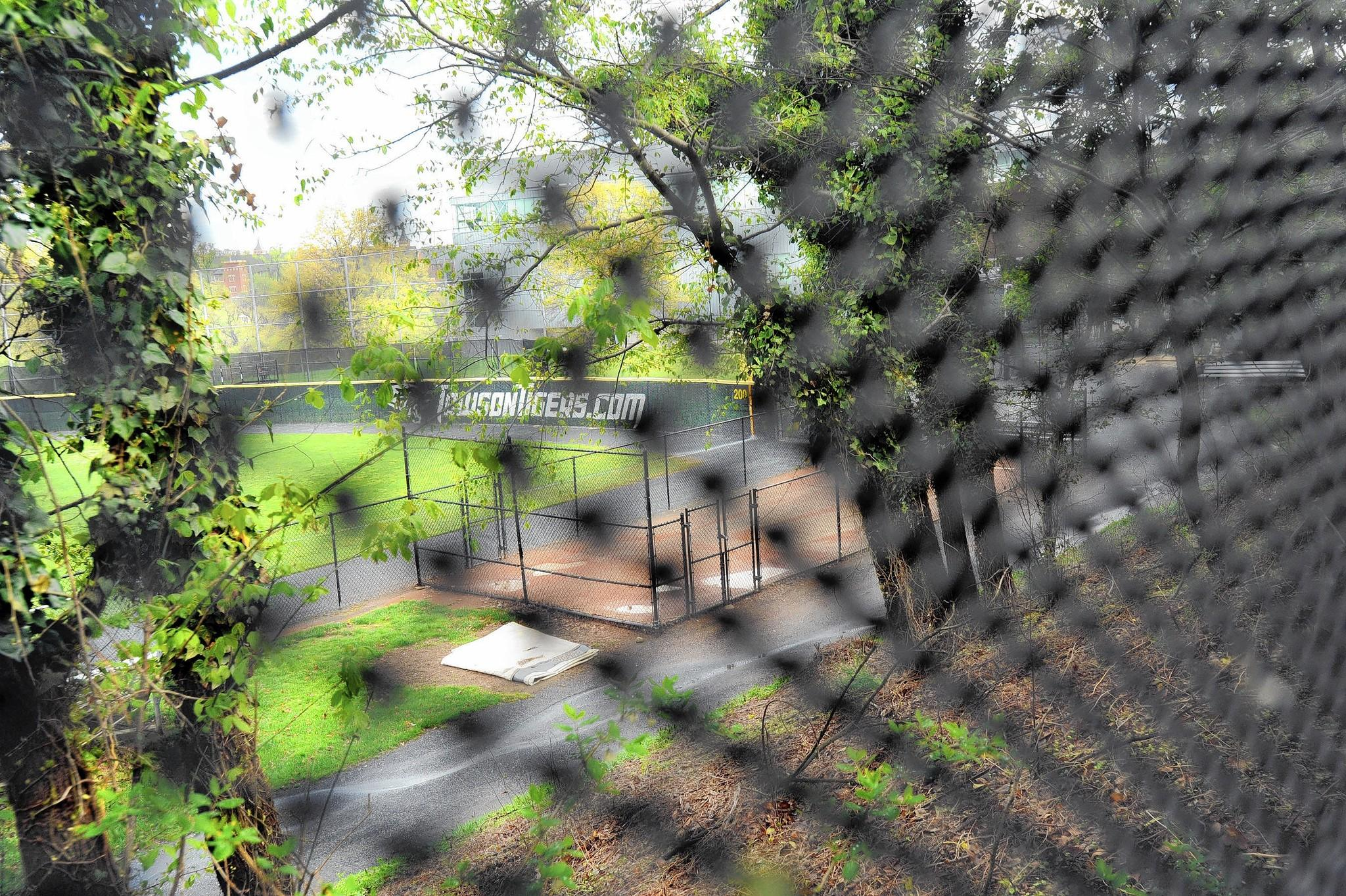 A portion of the Towson University softball complex is seen through the fence which runs along the property line of neighbors in Rodgers Forge on May 1.