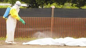 FDA 'stands ready' to work with companies developing Ebola drugs