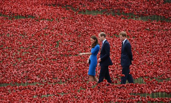 Catherine, William and Harry walk through a sea of red poppies inside the moat at the Tower of London. The moat was turned red as some 888,246 ceramic poppies were planted in memory of the British and Commonwealth dead from World War I.