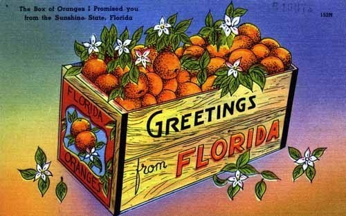 Photos greetings from florida classic postcards orlando sentinel m4hsunfo
