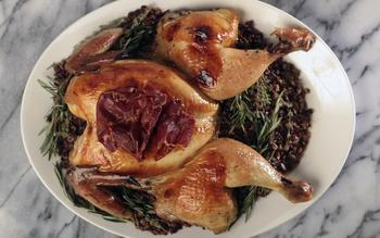 Casa Cordoba's Pollo de aceitunas (Olive chicken)