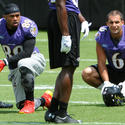 Steve Smith, Michael Campanaro