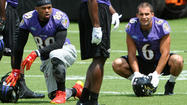 Ravens training camp [Pictures]