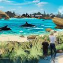 SeaWorld Whale Habitat