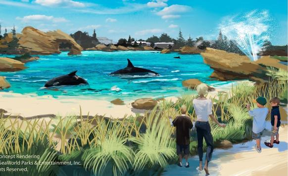 This rendering from SeaWorld illustrates a new habitat for the park's whales.