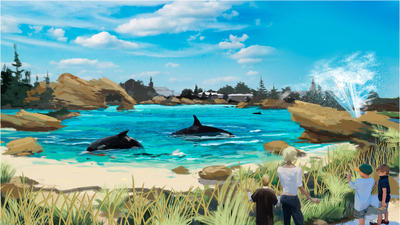 SeaWorld to expand killer-whale habitat at its parks