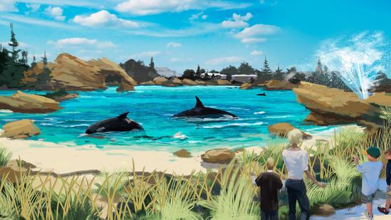 SeaWorld orca environment