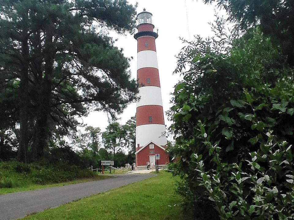 The Assateague lighthouse on the Eastern Shore of Virginia was first lit in 1867. It stands 142 feet tall.
