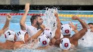 Coach of the Year: First-ever championship for Glendale High boys' water polo merits Holbrook top billing