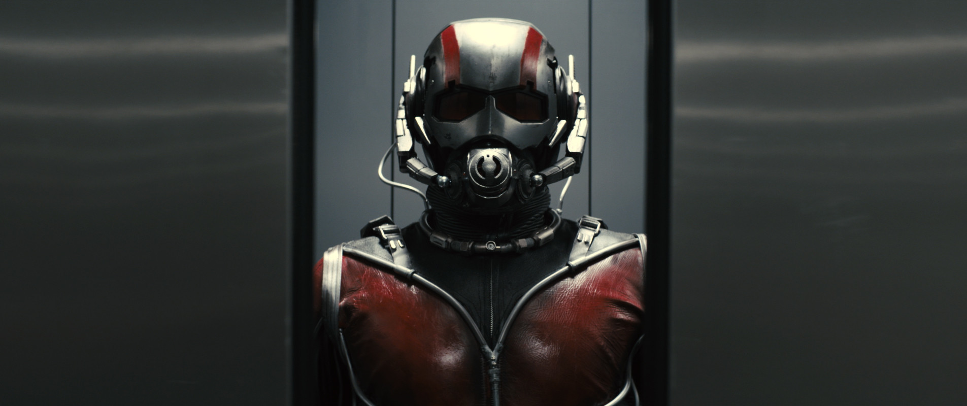 ant man - photo #22