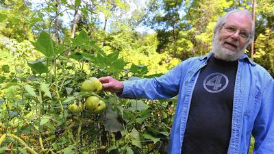 Gardening expert Mike McGrath's career has grown organically