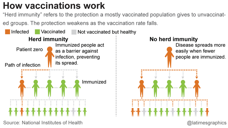 How Vaccines And Herd Immunity Work Utopia You Are Standing In It