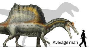 Spinosaurus, bigger than a T. rex