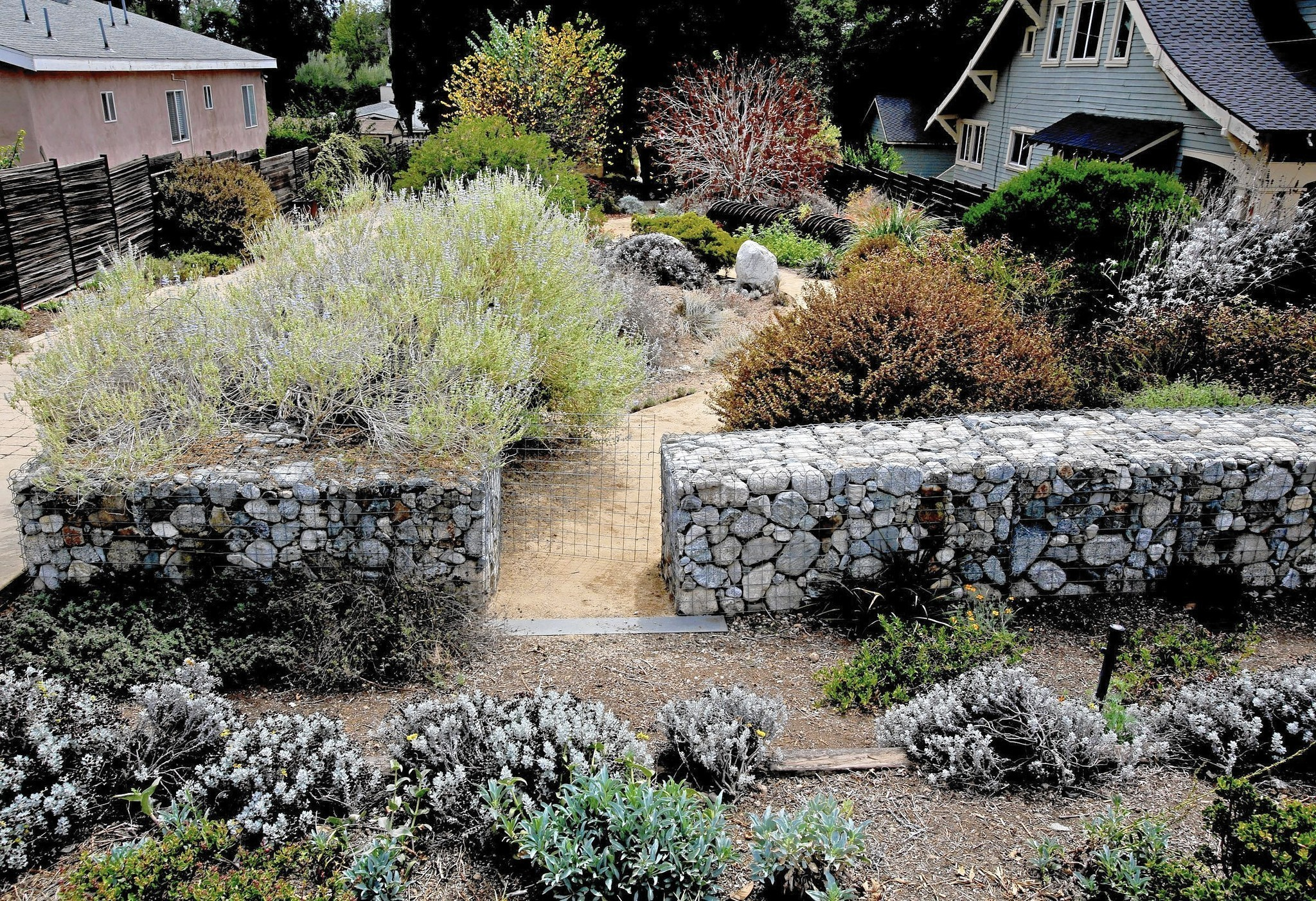 water wise fall planting la times