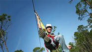 Central Florida's Zipline Safari takes riders atop the trees
