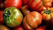 Got tomatoes? We've got recipes