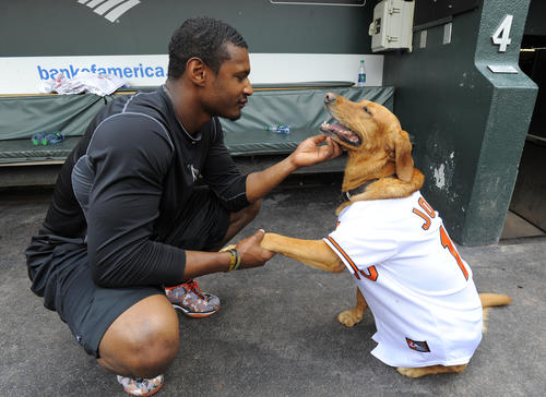 Adam Jones with his dog Missy in the dugout.
