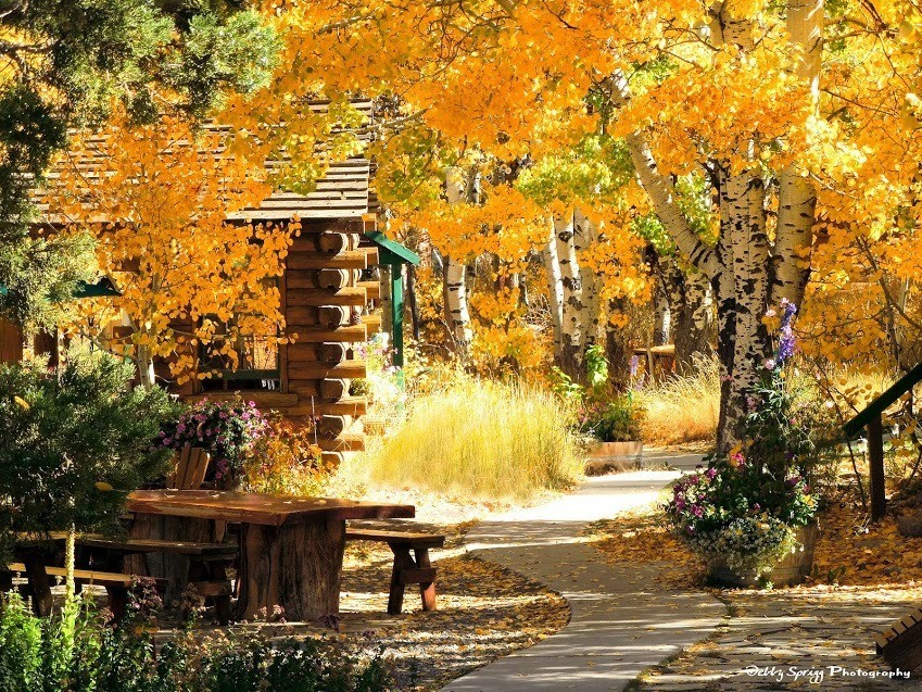 California: Check in on autumn colors