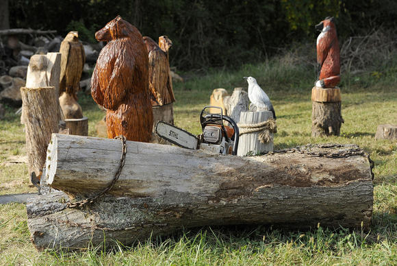 Chainsaw artist lisa webber baltimore sun