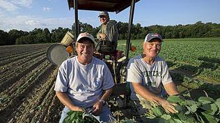 Video: Saving the Family Farm